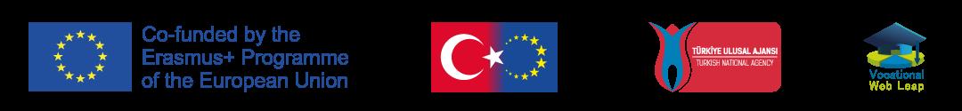 VOCATIONAL WEB LEAP Logo